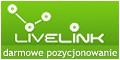 Pozycjonowanie linków - www.LiveLink.pl